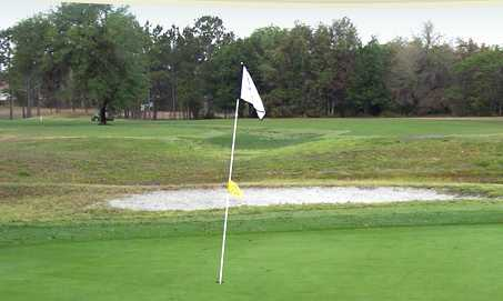 Lake Diamond Golf and Country Club homes for sale, homes for sale in lake diamond ocala