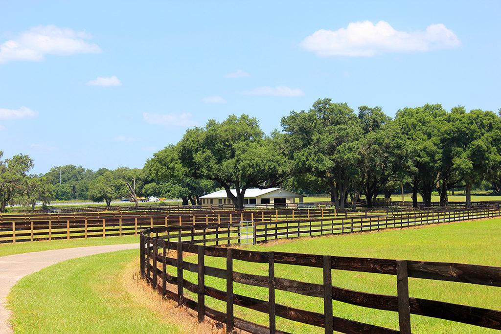 Rolling Hills Land for sale, rolling hills fl real estate